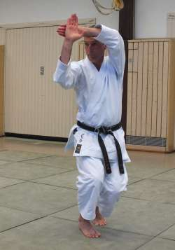 Stefan Kremp (5. Dan Shotokan Karate-Do)